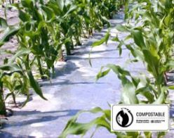 Soil Biodegradable & Compostable Clear Mulch Film - Bio360