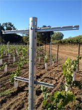 Cross Bars Trellissing System (Vertical post not included)