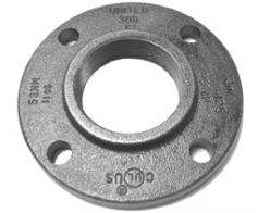 Black Steel Companion Flange
